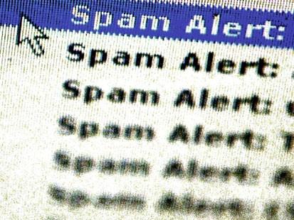 spam alert